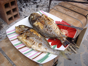 fishes-on-plate.jpg